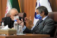 دیدار مدیرکل آژانس با رییس سازمان انرژی اتمی ایران