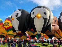 فستیوال بینالمللی بالونها درنیومکزیک آمریکا +تصاویر