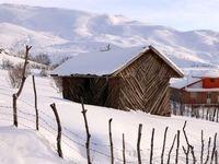 طبیعت زمستانی ییلاقات دیلمان گیلان +تصاویر