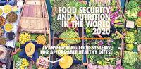جست و جوی هزینههای پنهان غذا در محیطزیست