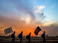 پیاده روی زائران اربعین حسینی در مسیر نجف به کربلا +عکس