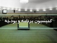 تصویب کلیات بودجه۹۹ در کمیسیون برنامه و بودجه مجلس