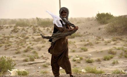 ادامه هجوم شنهای روان در سیستان +عکس