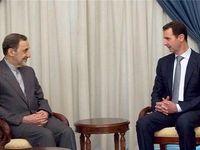 ولایتی از تاسیس دانشگاه آزاد در سوریه خبر داد