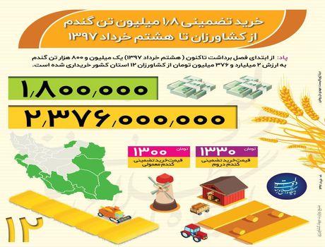 خرید تضمینی 1.8میلیون تن گندم از کشاورزان +اینفوگرافیک