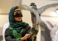 علاقه زنان عربستانی به شاهین شکاری +عکس