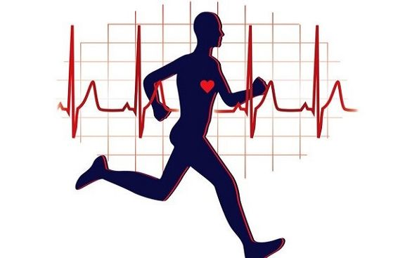 شرایط قلب در زمان ورزش