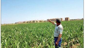 سوگ زراعت در پایتخت