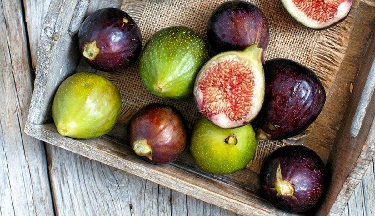 خوردن این میوه را فراموش نکنید + عکس