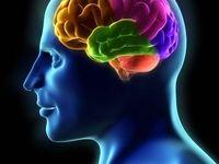 ویتامینها و املاح تقویتکننده مغز کدامند؟