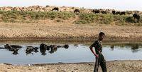 سایه شبکه اختلاس بر بودجه آب خوزستان / کارنامه بودجه ۱۱۵۰ میلیارد تومانی منتشر شود