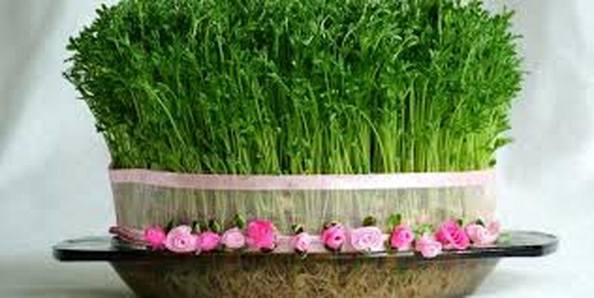 گل و سبزه شب عید را چند بخریم؟