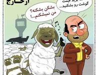 واکنش گوسفندها به کاهش قیمت گوشت! (کاریکاتور)