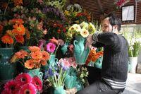 پژمردن گلها و گلخانهها در بهار کرونا