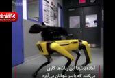رباتی که در بسته را باز میکند! +فیلم