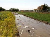 شکستگی لوله نفت به اراضی کشاورزی دهلران خسارت زد