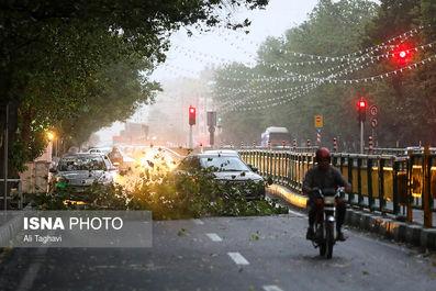 طوفان تهران