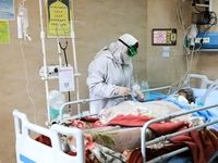 بوشهر از وضعیت سفید شیوع ویروس کرونا خارج شد