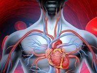 5گزینه طبیعی برای بهبود گردش خون