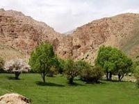 ۷۷ هکتار از اراضی ملی دماوند رفع تصرف شد