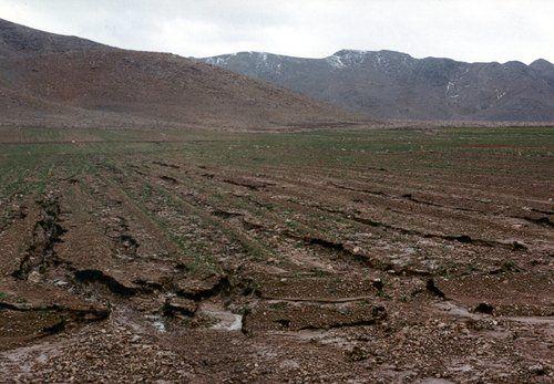 زمینخواری ۲۳۰۰هکتاری در غرب هرمزگان