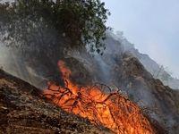 آخرین وضعیت آتش سوزی در جنگلهای گچساران