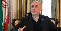 پیام رییس سازمان انرژی اتمی در پی شهادت دانشمند ایرانی