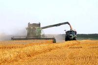 برترین استارتاپهای حوزه کشاورزی اروپا/ ایرلند؛ پیشتاز نوآوری در صنعت آبزیپروری