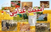 کاهش امنیت غذایی در کشور/ پیشنهاد طرحی جایگزین برای حمایت از معیشت مردم