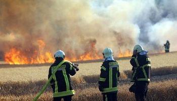 35هکتار از زمینهای شمیرانات در آتش سوخت