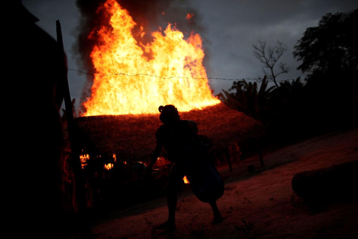 جنگجویان آمازون به روایت تصویر
