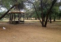 ورود به پارکهای جنگلی در ۱۳فروردین رایگان است