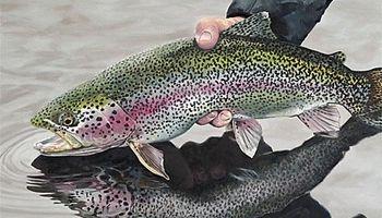 واردات با ارز دولتی واحدهای تکثیر تخم ماهی قزلآلا را تعطیل کرد
