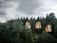 روشی لوکس و جالب برای زندگی در جنگل +تصاویر