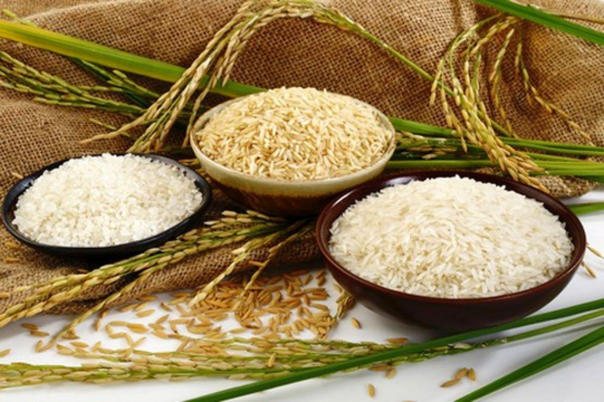 ۱۸۵۰۰تومان؛ قیمت برنج دولتی