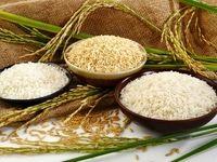 آخرین تغییرات تعرفه واردات برنج