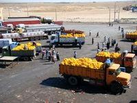 دلالان خارجی، محصولات کشاورزی را پیشخرید کردند؟