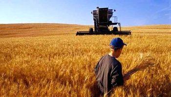 یارانه انرژی بازهم به کار مردم نیامد/ پشت پای کشاورزان به تامین نیاز داخلی گندم