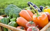 سبزیجاتی که در فصل گرما باید مصرف کنید