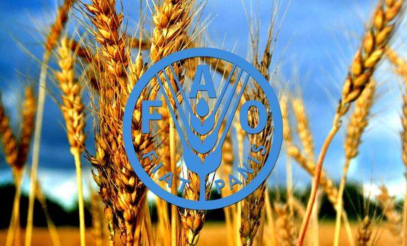 قیمت مواد غذایی در جهان در ماه سپتامبر کاهش یافته است