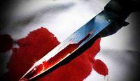 قتل داماد به خاطر کتکزدن خواهر