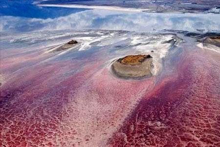 Смертельная красота озера Натрон: зловещее место, где животные превращаются в истуканы, а фламинго благоприятно размножаются