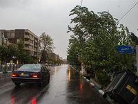 چرا هواشناسی طوفان دیشب تهران را پیشبینی نکرد؟