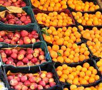 قیمت عمده فروشی ۵۴قلم میوه و صیفی +جدول