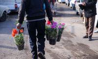 بازار گل محلاتی تعطیل است
