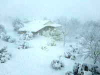 بارش اولین برف زمستانی در هندوستان +عکس