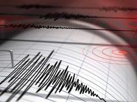 زلزله ۴.۹ریشتری استان بوشهر را لرزاند