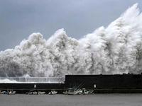 تصاویری از خسارت طوفان جِبی در ژاپن +فیلم