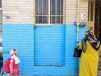جشن شکوفهها +تصاویر