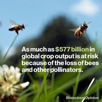 تغییرات اقلیمی به کدام بخشهای زندگی بشر صدمه زده؟/ ضرر میلیاردها دلاری به بخش کشاورزی